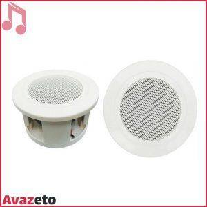 Ceiling Speaker Aap Pro PA-3G-180