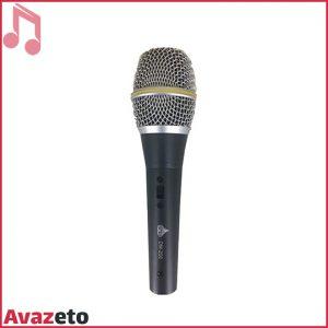 Microphone D&D DM-200