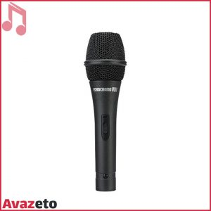Microphone EchoChang-BETA5